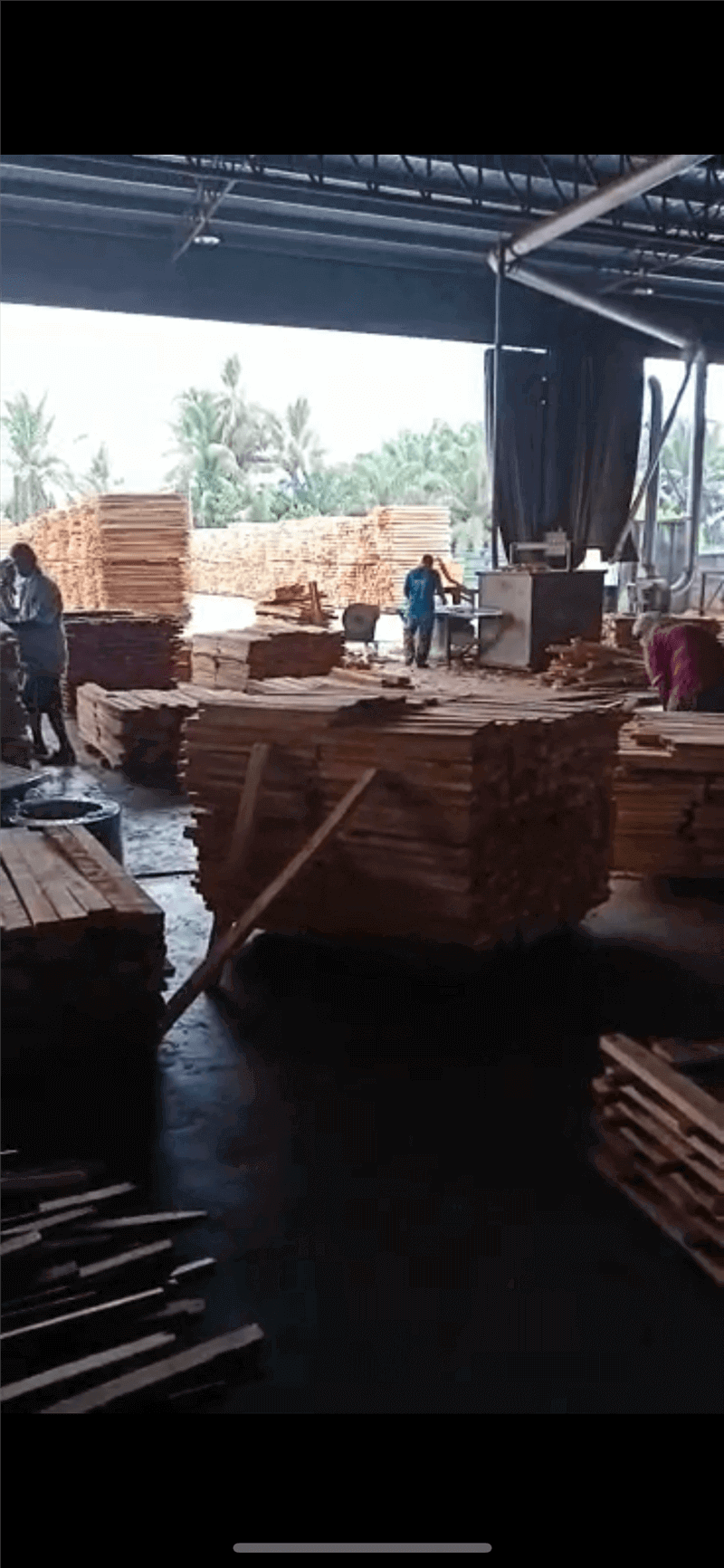 马来西亚木材厂整体转让