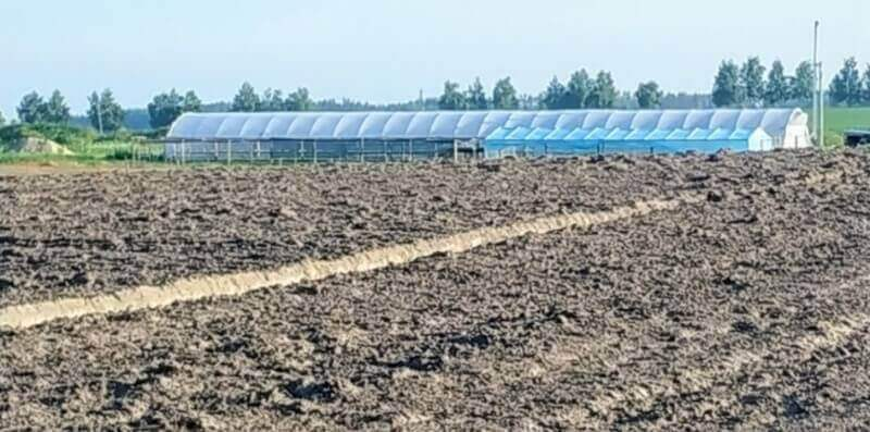 Sale Or Rent Of A Farm - Plant Nursery