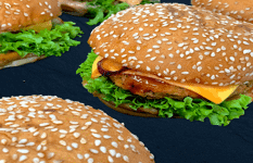 One Of The Best Meatfree (Vegan/Vegetarian) Burger Takeaway/Delivery Outlets For Sale